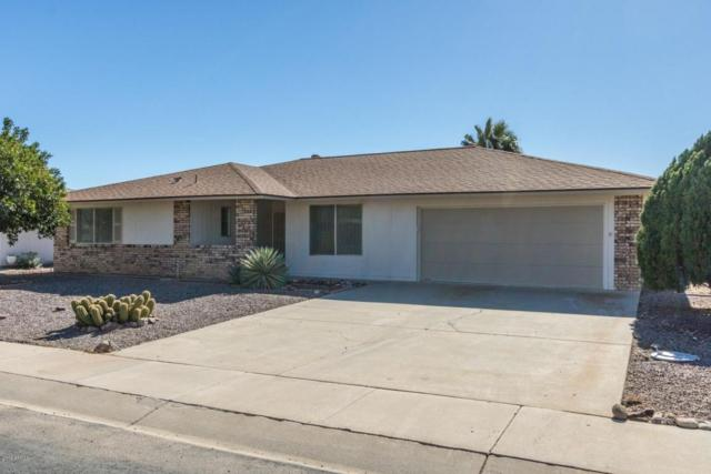 20019 N Willow Creek Circle, Sun City, AZ 85373 (MLS #5717652) :: The Everest Team at My Home Group