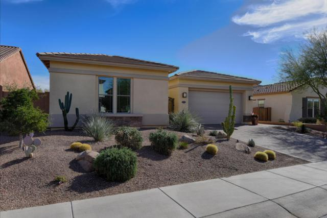 5327 E Baker Drive, Cave Creek, AZ 85331 (MLS #5717705) :: The Wehner Group