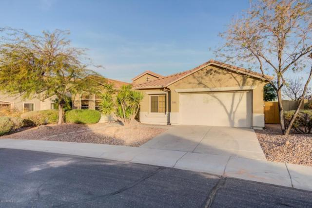 2356 W Clearview Trail, Phoenix, AZ 85086 (MLS #5717895) :: Occasio Realty