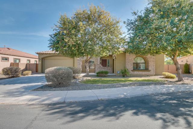 4961 S Rincon Drive, Chandler, AZ 85249 (MLS #5718061) :: My Home Group