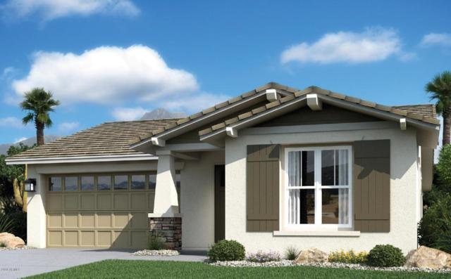 9344 W Meadowbrook Avenue, Phoenix, AZ 85037 (MLS #5718127) :: Occasio Realty