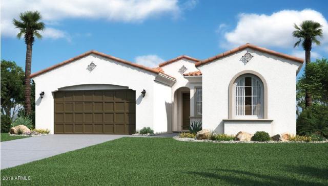 9410 W Meadowbrook Avenue, Phoenix, AZ 85037 (MLS #5718143) :: Occasio Realty