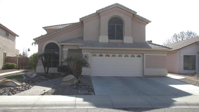 6637 W Rose Garden Lane, Glendale, AZ 85308 (MLS #5718144) :: Essential Properties, Inc.
