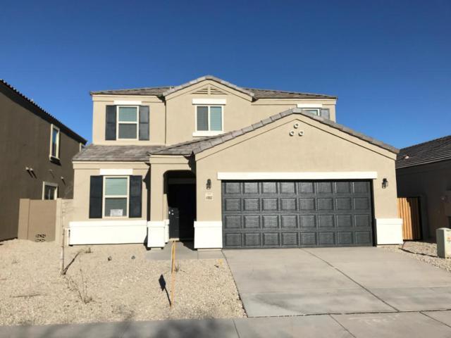41966 W Ramona Street, Maricopa, AZ 85138 (MLS #5718364) :: Yost Realty Group at RE/MAX Casa Grande