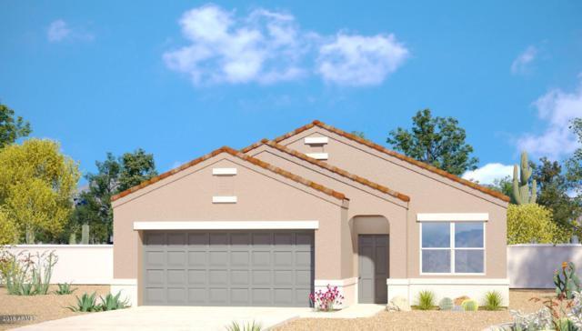 41823 W Chatham Place, Maricopa, AZ 85138 (MLS #5718367) :: Yost Realty Group at RE/MAX Casa Grande