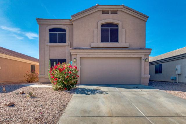 914 S 239TH Lane, Buckeye, AZ 85326 (MLS #5718432) :: Yost Realty Group at RE/MAX Casa Grande