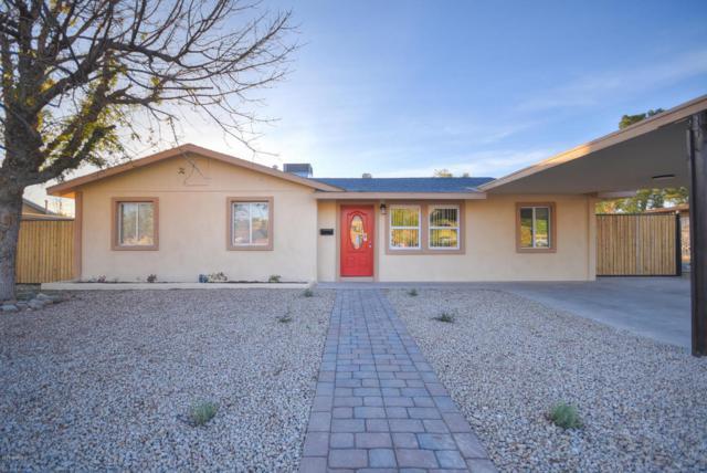 9618 N 10TH Avenue, Phoenix, AZ 85021 (MLS #5718476) :: Yost Realty Group at RE/MAX Casa Grande