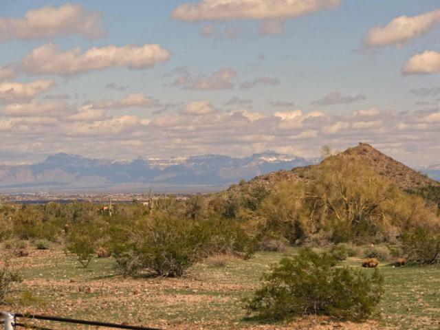 33000-X N Bell Road, Queen Creek, AZ 85142 (MLS #5718545) :: My Home Group