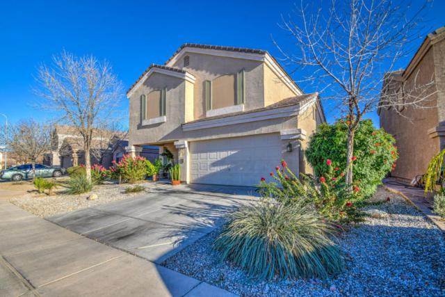 8705 W Superior Avenue, Tolleson, AZ 85353 (MLS #5718714) :: The Everest Team at My Home Group