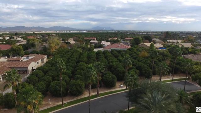 2109 N Pomelo, Mesa, AZ 85215 (MLS #5718797) :: Brett Tanner Home Selling Team
