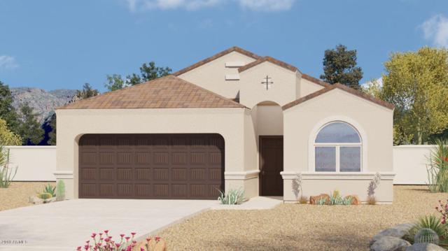 42062 W Lunar Street, Maricopa, AZ 85138 (MLS #5718879) :: Yost Realty Group at RE/MAX Casa Grande