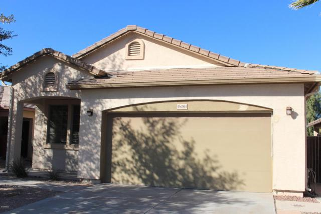 45084 W Desert Cedars Lane, Maricopa, AZ 85139 (MLS #5718882) :: Yost Realty Group at RE/MAX Casa Grande