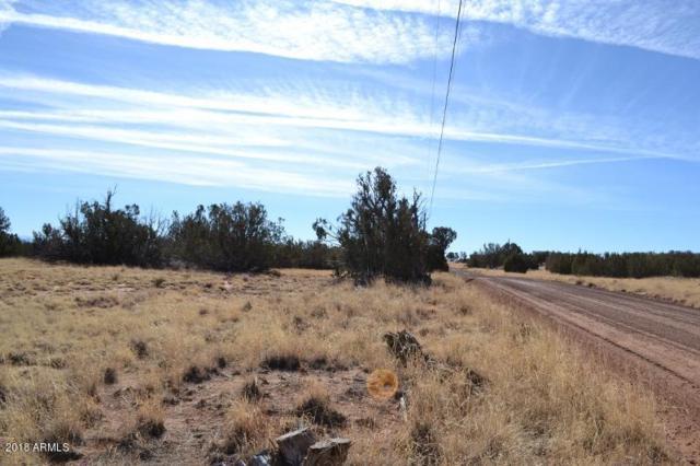 3845 Petersen Road, Snowflake, AZ 85937 (MLS #5718887) :: Brett Tanner Home Selling Team