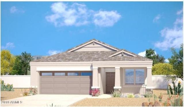 42127 W Lunar Street, Maricopa, AZ 85138 (MLS #5718897) :: Yost Realty Group at RE/MAX Casa Grande