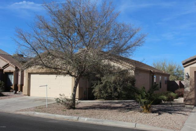 6866 E Lush Vista View, Florence, AZ 85132 (MLS #5718953) :: Yost Realty Group at RE/MAX Casa Grande