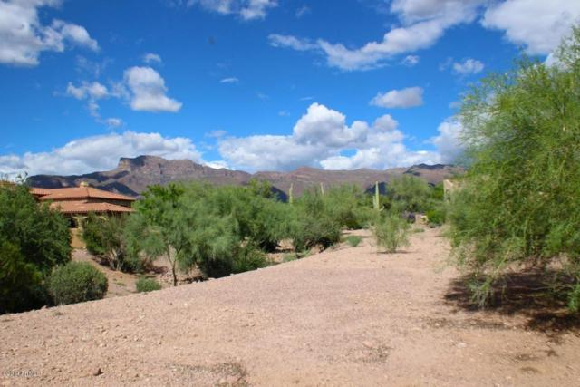 6409 E Ponderosa Loop, Gold Canyon, AZ 85118 (MLS #5719081) :: Kortright Group - West USA Realty