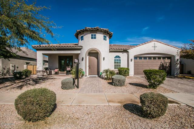 22412 E Pecan Lane, Queen Creek, AZ 85142 (MLS #5719306) :: Occasio Realty