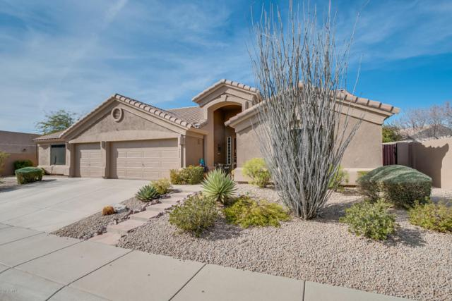 4880 E Armor Street, Cave Creek, AZ 85331 (MLS #5719378) :: The Everest Team at My Home Group