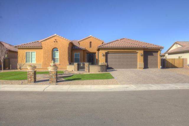 8038 W Chama Drive, Peoria, AZ 85383 (MLS #5719404) :: Occasio Realty