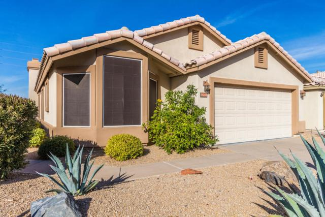 31244 N 40TH Place, Cave Creek, AZ 85331 (MLS #5719480) :: The Everest Team at My Home Group