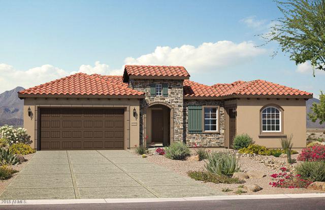 27585 W Tonopah Drive, Buckeye, AZ 85396 (MLS #5719556) :: Santizo Realty Group