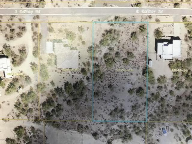 2049 E Gaffney Road, New River, AZ 85087 (MLS #5719558) :: Riddle Realty