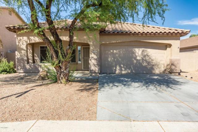 7682 W Sands Drive, Peoria, AZ 85383 (MLS #5719565) :: Yost Realty Group at RE/MAX Casa Grande