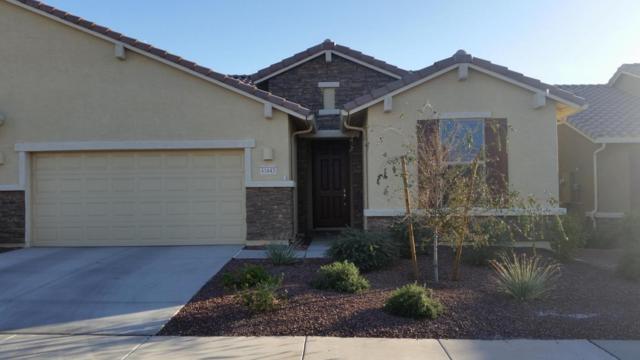 41643 W Caliente Drive, Maricopa, AZ 85138 (MLS #5719676) :: Yost Realty Group at RE/MAX Casa Grande