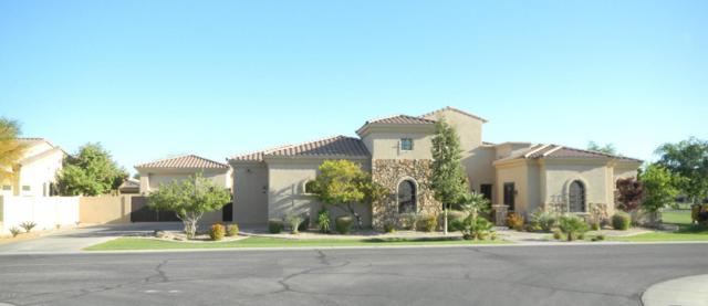2658 E Locust Drive, Chandler, AZ 85286 (MLS #5719889) :: My Home Group