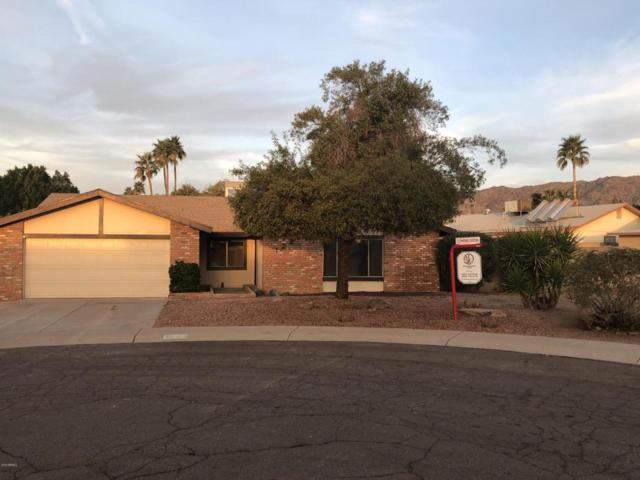 12216 S Shasta Place, Phoenix, AZ 85044 (MLS #5719940) :: Kepple Real Estate Group
