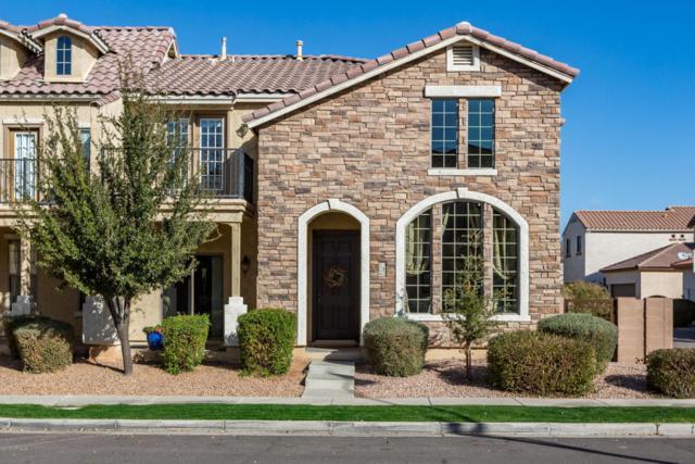 3348 E Orchid Lane, Gilbert, AZ 85296 (MLS #5719984) :: Yost Realty Group at RE/MAX Casa Grande