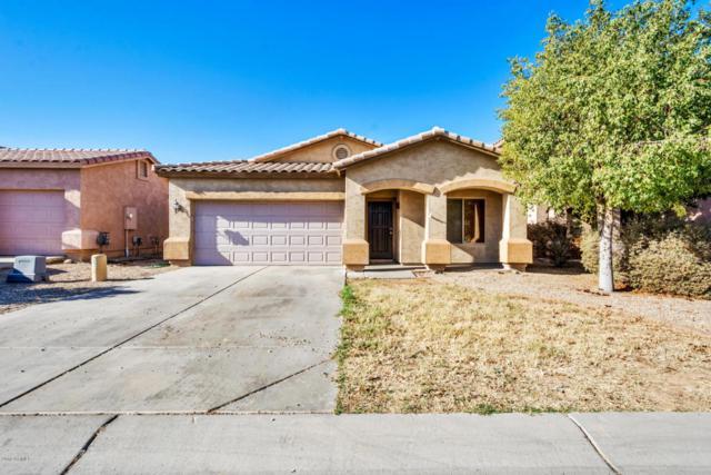30024 N Desert Willow Boulevard, San Tan Valley, AZ 85143 (MLS #5720155) :: Yost Realty Group at RE/MAX Casa Grande