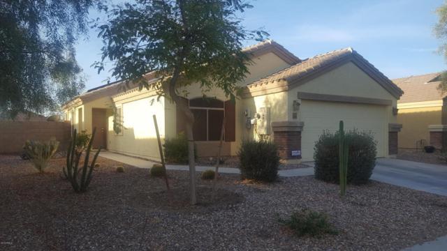 23581 W Bowker Street, Buckeye, AZ 85326 (MLS #5720169) :: Yost Realty Group at RE/MAX Casa Grande