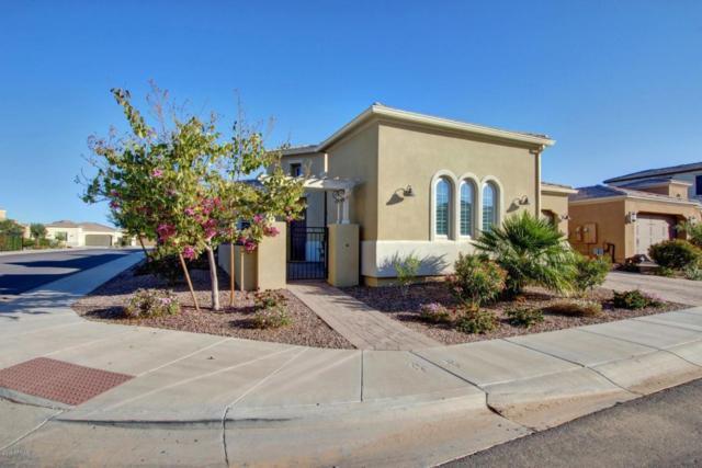 1502 E Copper Hollow, San Tan Valley, AZ 85140 (MLS #5720207) :: Yost Realty Group at RE/MAX Casa Grande