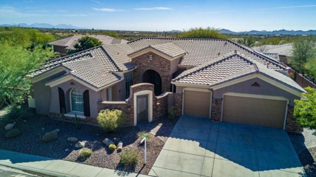 1211 W Sousa Court, Anthem, AZ 85086 (MLS #5720225) :: Yost Realty Group at RE/MAX Casa Grande
