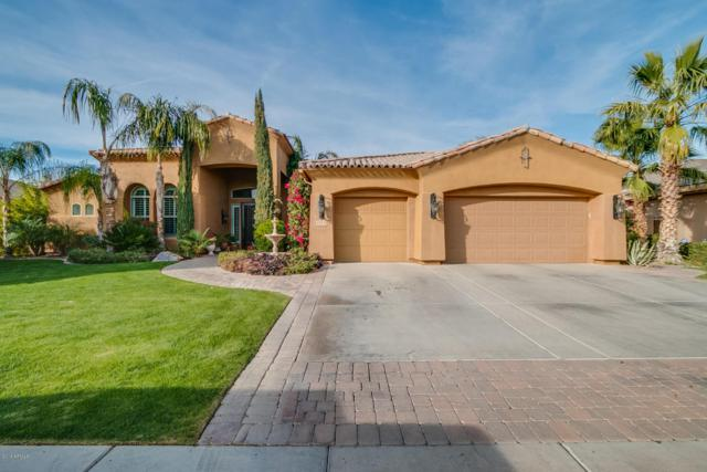 1570 W Grand Canyon Drive, Chandler, AZ 85248 (MLS #5720307) :: Revelation Real Estate