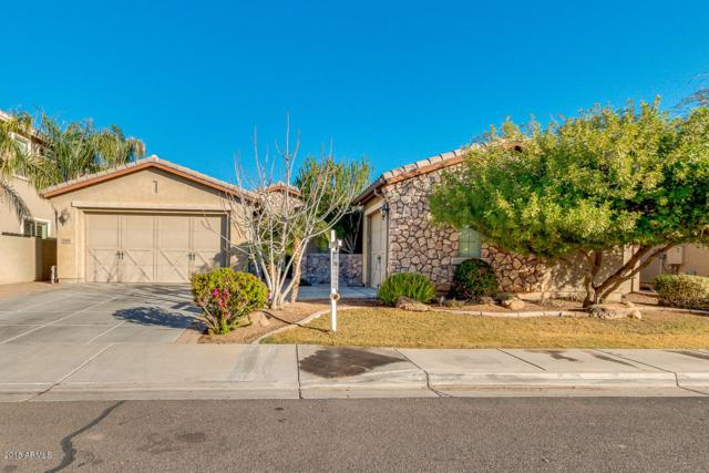 3374 E Virgil Drive, Gilbert, AZ 85298 (MLS #5720367) :: Kortright Group - West USA Realty