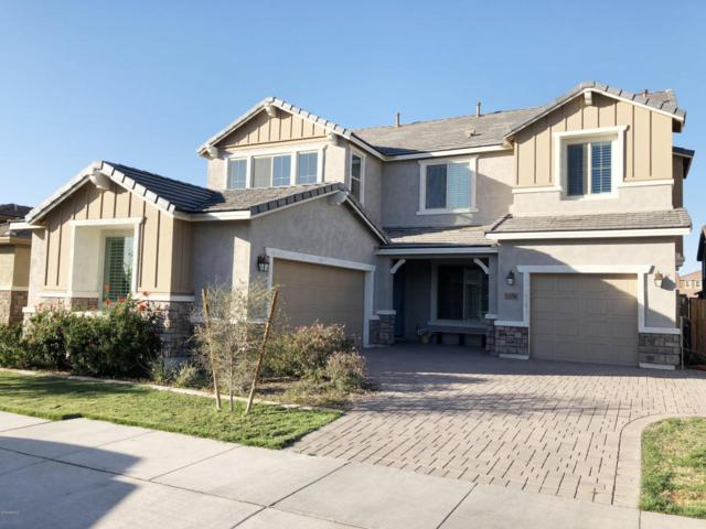 7056 E Plata Avenue, Mesa, AZ 85212 (MLS #5720405) :: Occasio Realty
