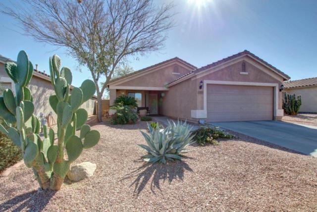 30805 N Coral Bean Drive, San Tan Valley, AZ 85143 (MLS #5720420) :: Yost Realty Group at RE/MAX Casa Grande