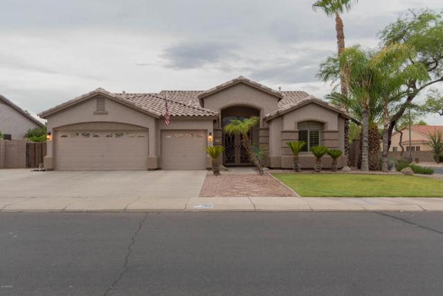 2881 E Temple Court, Gilbert, AZ 85296 (MLS #5720426) :: Yost Realty Group at RE/MAX Casa Grande