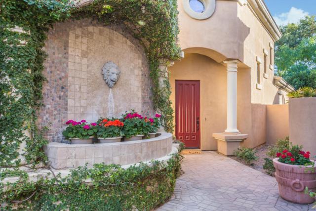 3433 E Lions Street, Phoenix, AZ 85018 (MLS #5720543) :: Yost Realty Group at RE/MAX Casa Grande