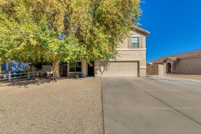 1090 E Harold Drive, San Tan Valley, AZ 85140 (MLS #5720555) :: Yost Realty Group at RE/MAX Casa Grande