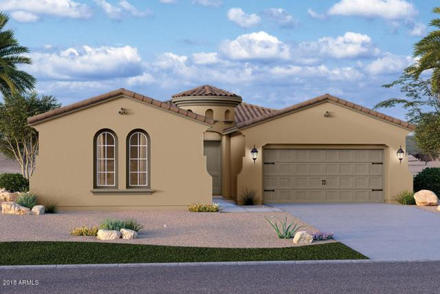 9247 W Running Deer Trail, Peoria, AZ 85383 (MLS #5720633) :: Occasio Realty