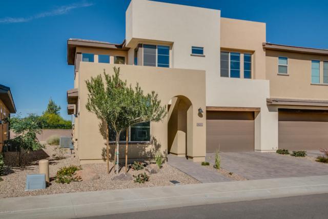 36202 N Desert Tea Drive, San Tan Valley, AZ 85140 (MLS #5720646) :: Yost Realty Group at RE/MAX Casa Grande