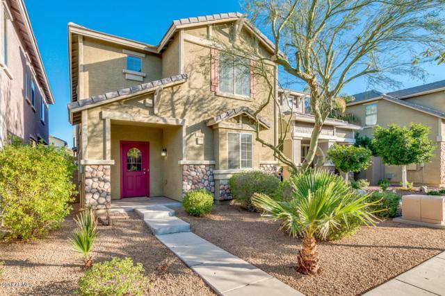 4378 E Selena Drive, Phoenix, AZ 85050 (MLS #5720648) :: Occasio Realty