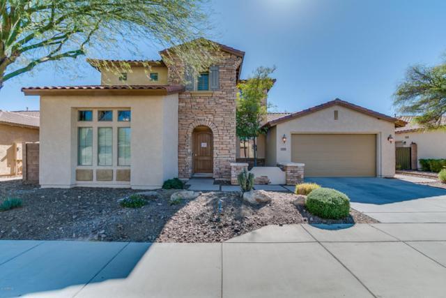 12253 W Ashby Drive, Peoria, AZ 85383 (MLS #5720712) :: Occasio Realty