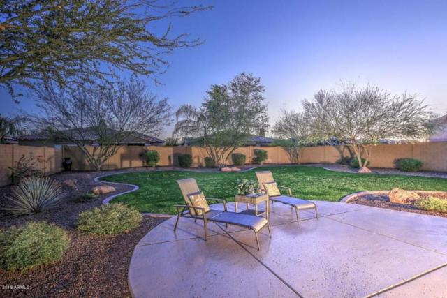 12829 W Via Caballo Blanco, Peoria, AZ 85383 (MLS #5720723) :: The Jesse Herfel Real Estate Group