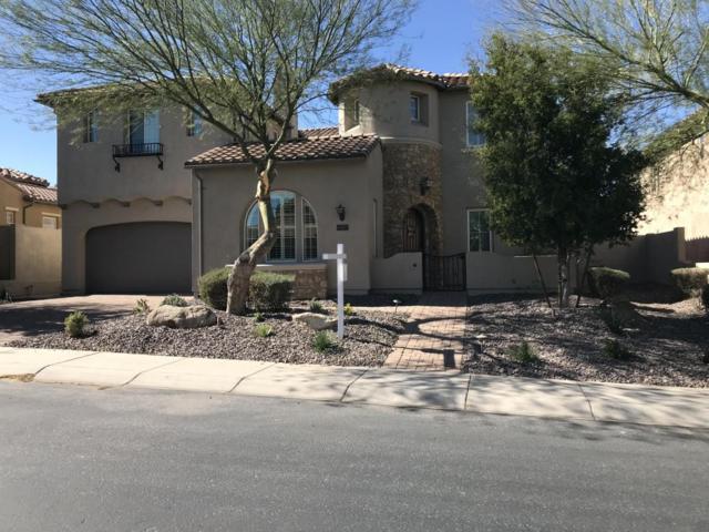 28768 N 68TH Avenue, Peoria, AZ 85383 (MLS #5720775) :: The Laughton Team