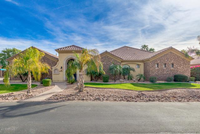 18029 W San Juan Avenue, Litchfield Park, AZ 85340 (MLS #5720787) :: Occasio Realty