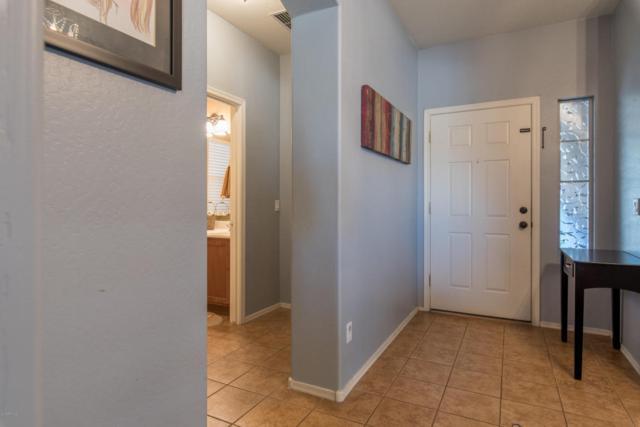35801 N Zachary Road, Queen Creek, AZ 85142 (MLS #5720795) :: Yost Realty Group at RE/MAX Casa Grande